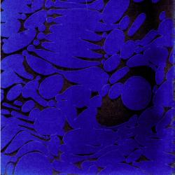larry-gus-526563_250x250